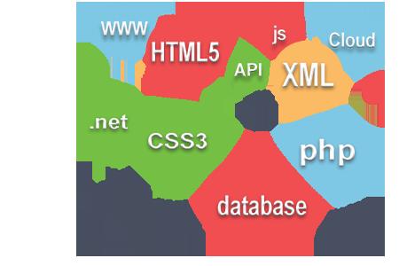 Web and custom application development